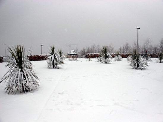 winter feb 13 13-02-2013 13-25-27