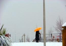 winter feb 13 13-02-2013 13-26-52